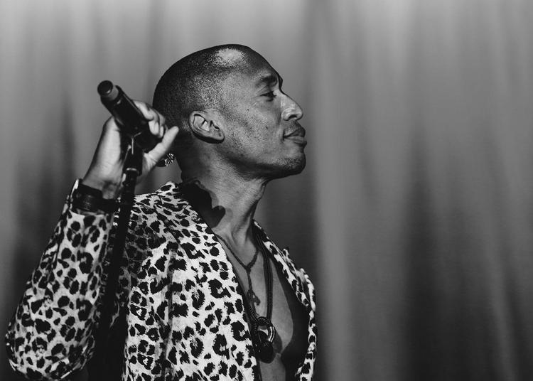 Nancy Jazz Pulsations 2018 : Raphael Saadiq, Maceo Parker et The James Hunter Six
