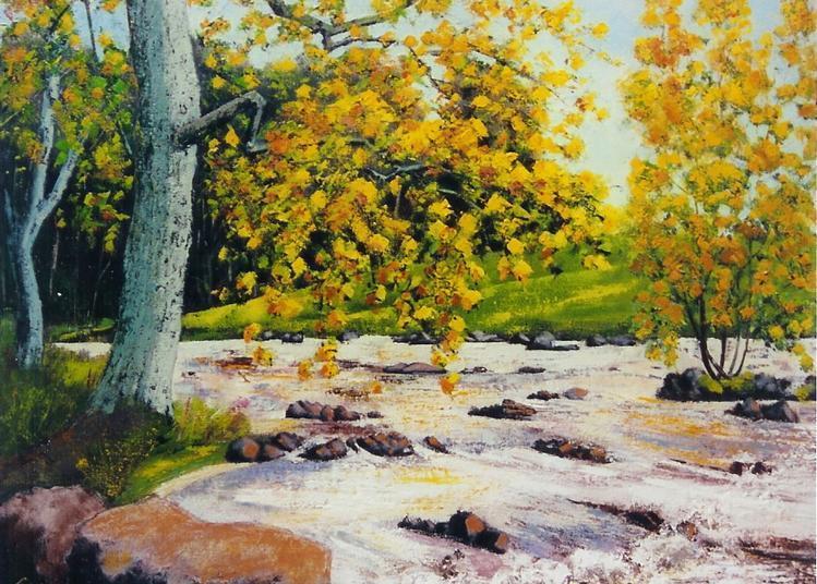 Nature en Liberté à Balaruc les Bains