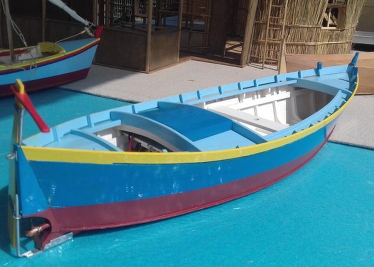 Navigation De Modèles Réduits De Barques Catalanes Sur La Lagune à Le Barcares