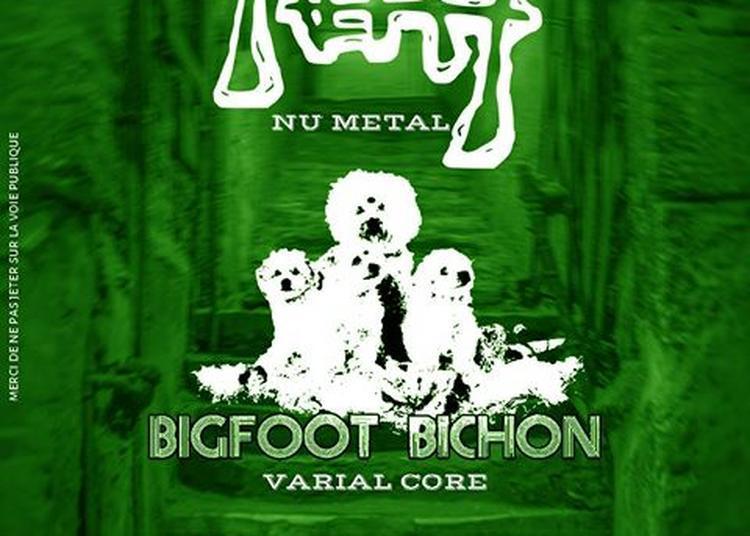 Neat // Bigfoot Bichon // Undisputed à Toulouse