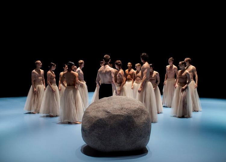 Nederlands Dans Theater à Martigues