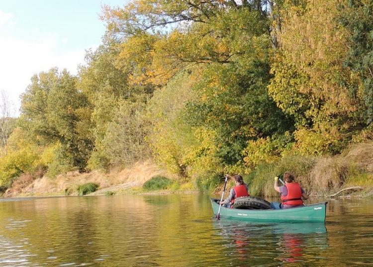 Nettoyons La Loire En Canoë à La Charite sur Loire