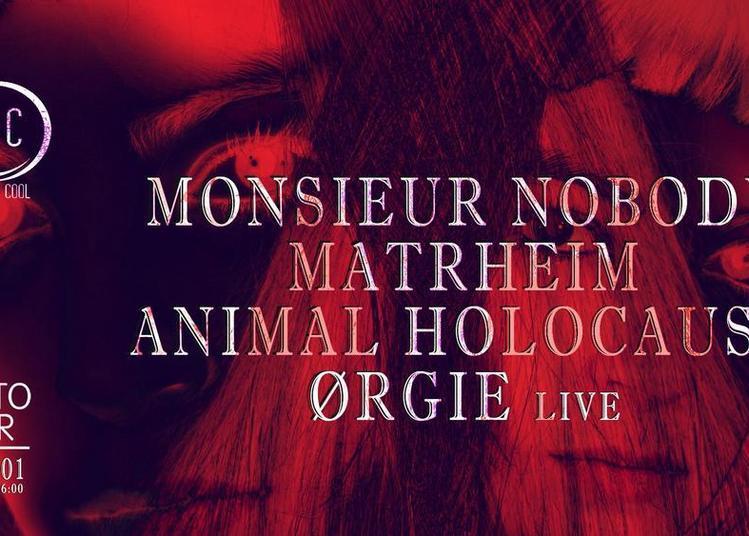 New's Cool : Animal Holocaust X Ørgie X Matrheim & More à Paris 13ème