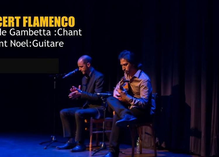 Niño De Gambetta Concert Flamenco à Paris 11ème