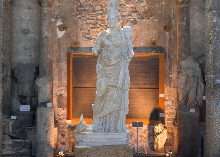 Nocturne Au Musée Saint-pierre à Vienne