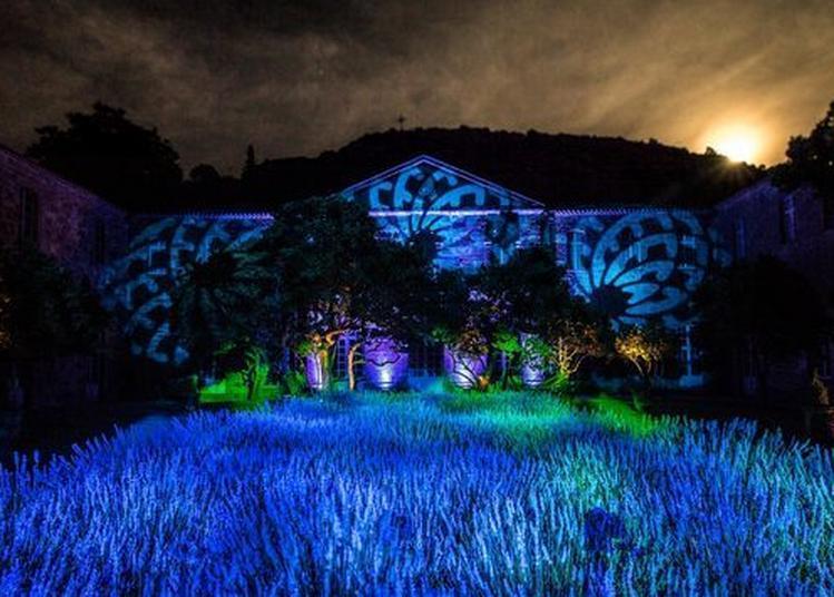 Nocturne En Son Et Lumière à Narbonne