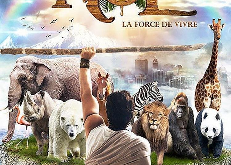 Noé , La Force De Vivre à Paris 16ème