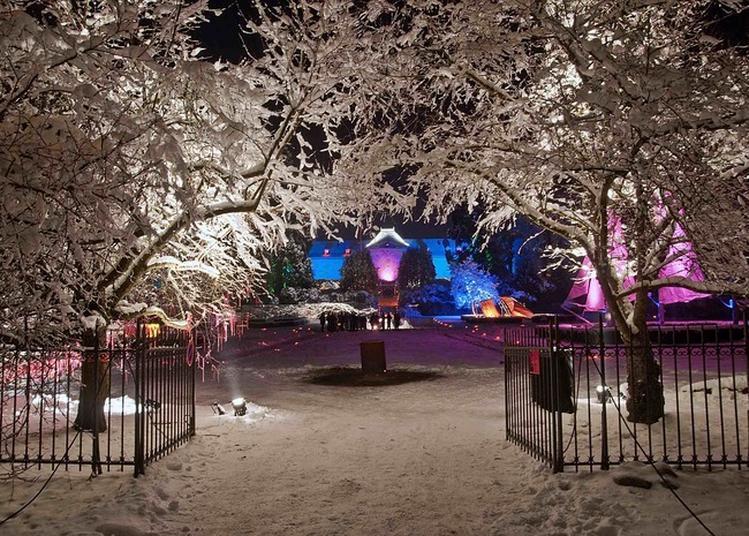 Noël au Jardin - Le Prince des Voleurs à Husseren Wesserling