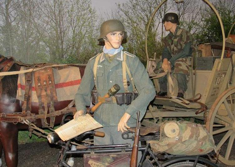 Normandy Victory Museum à Catz