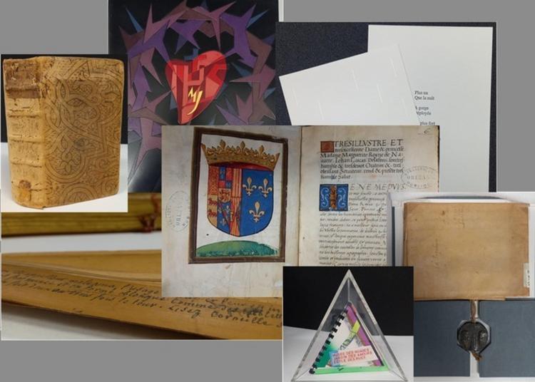 Nos Collections Précieuses à Orléans