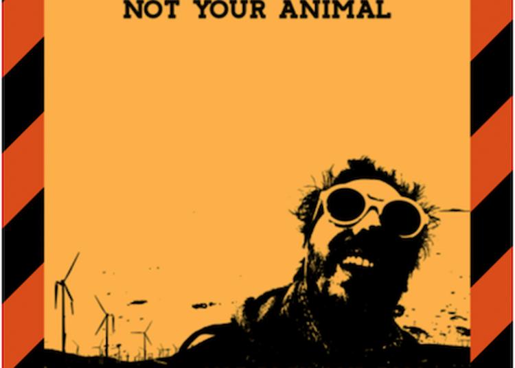 Not Your Animal à Alfortville