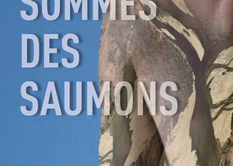 NOUS SOMMES DES SAUMONS à Paris 18ème