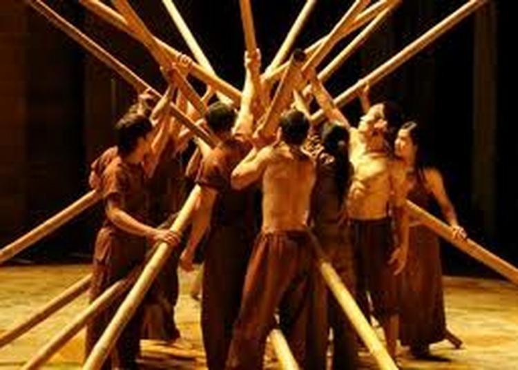 Nouveau Cirque Du Vietnam à Paris 19ème