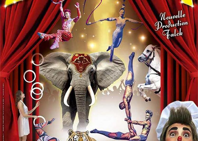 Nouveau Cirque Zavatta à Auch