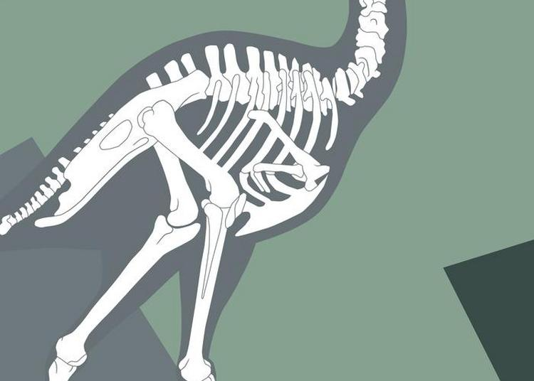 Nouveau Parcours De Paléontologie Et De Préhistoire à Compiegne
