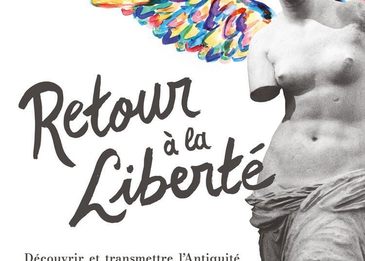 Nouvelle Exposition Au Musée Des Moulages : Eleutheria (retour à La Liberté) ! Découvrir Et Transmettre L'antiquité à Lyon