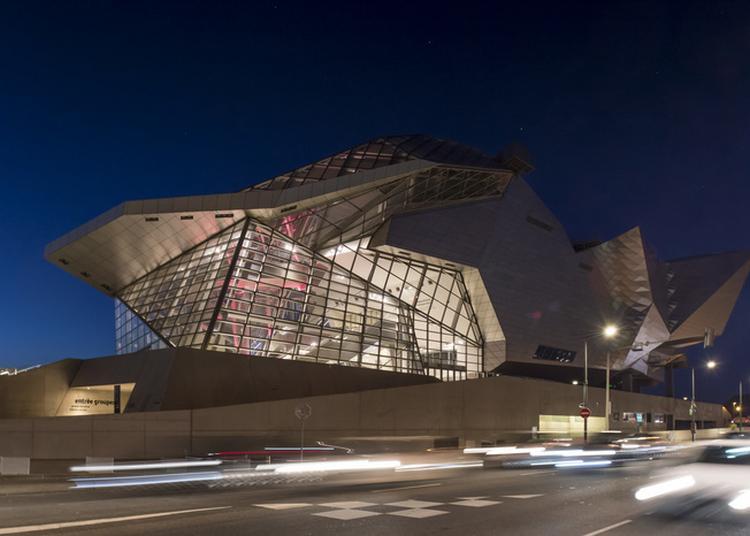 Nuit Au Musée Des Confluences à Lyon