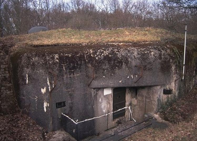Observatoire Ligne Maginot à Boust