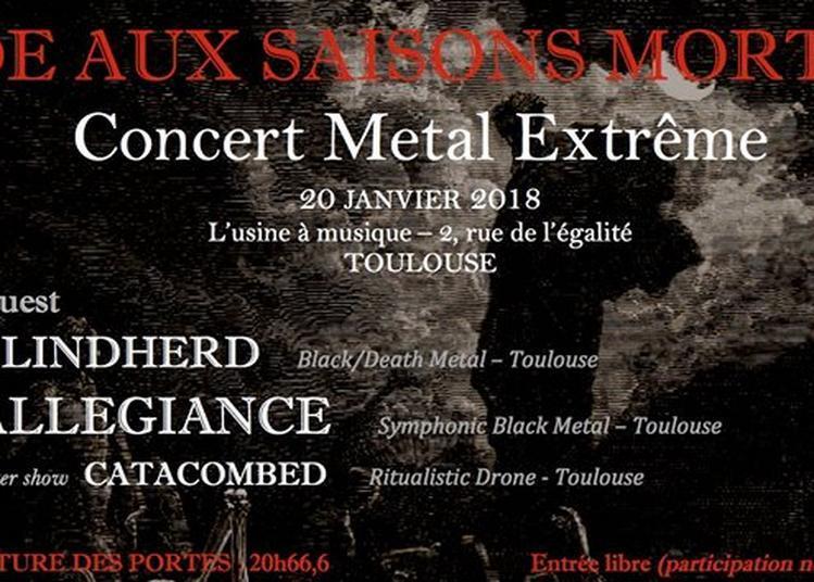 Ode Aux Saisons Mortes à Toulouse