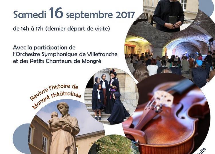 Orchestre Symphonique De Villefranche à Villefranche sur Saone