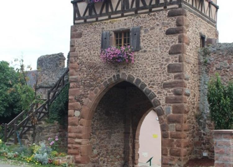 Ouverture De La Tour Des Sorcières à Chatenois
