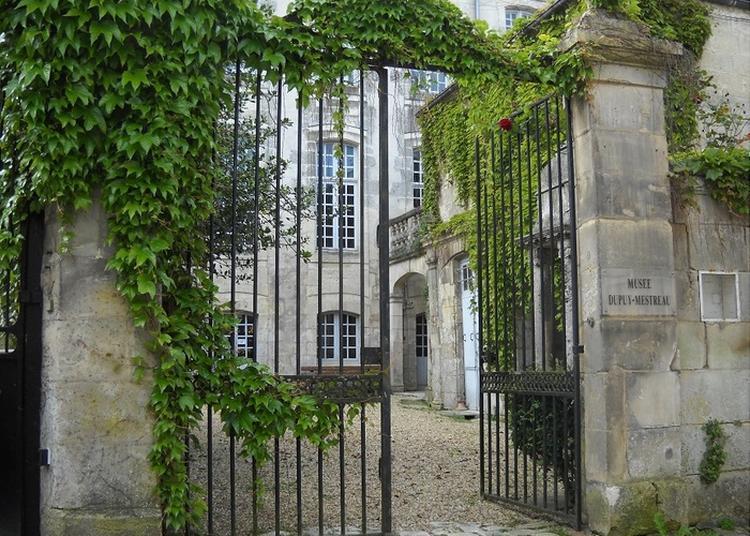 Ouverture Et Visite Libre Du Musée à Saintes