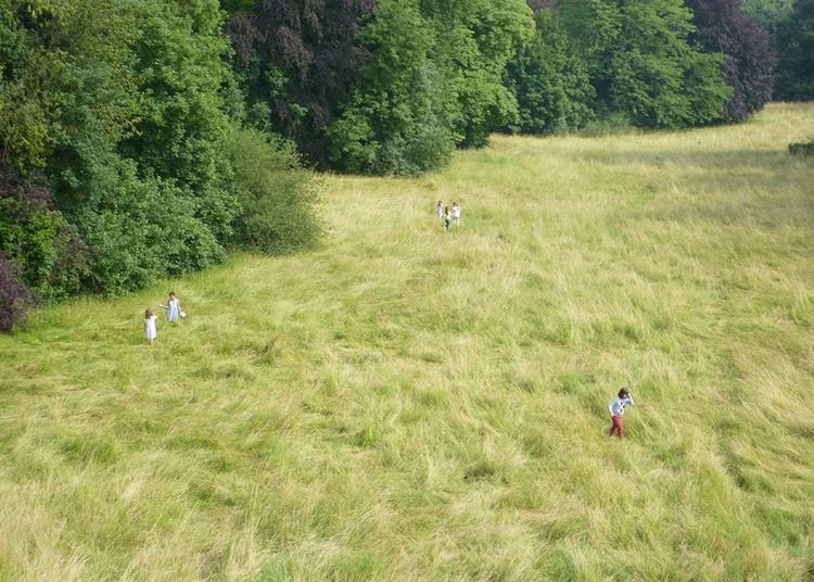 Ouverture Exceptionnelle Du Parc De La Fondation Des Artistes à Nogent sur Marne