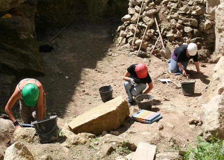 Ouverture Exceptionnelle Du Site Archéologique D'orville à Louvres