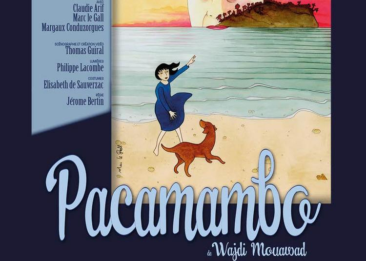 Pacamambo à Margny les Compiegne