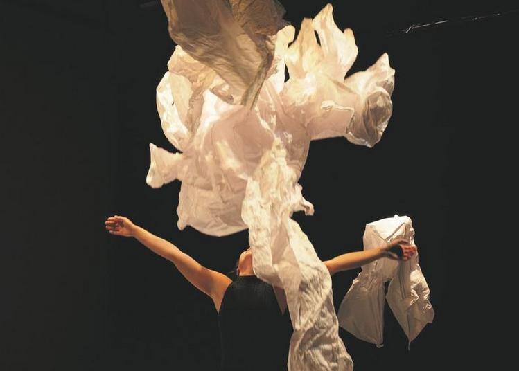 Papiers / Dansés  Danse Par La Compagnie