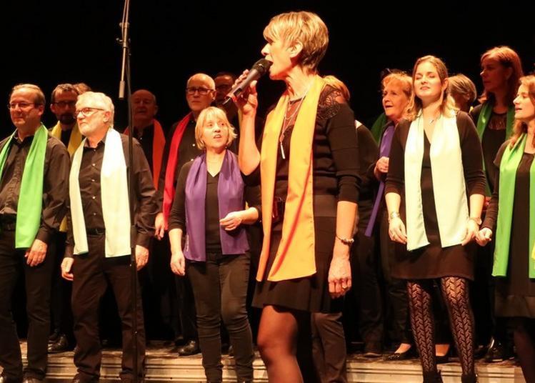 Parc De L'espinose : Concert Du Groupe The Happy Gospel Singers à Clisson
