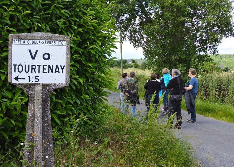 Parcours-découverte Tourtenay, un village résistant (1940-1944) à Thouars
