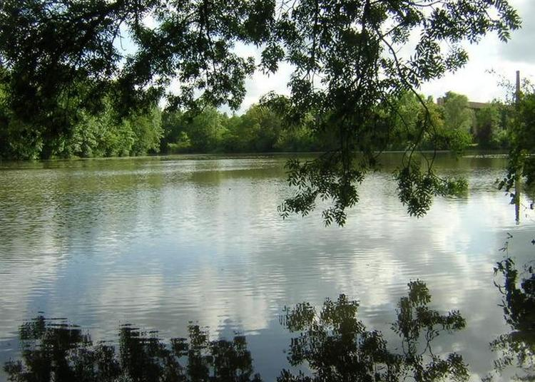 Parcours Pédagogiques Autour Du Plan D'eau De La Filature à Liguge