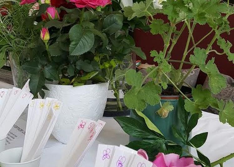 Parfum D'enfance à Saint Germain en Laye