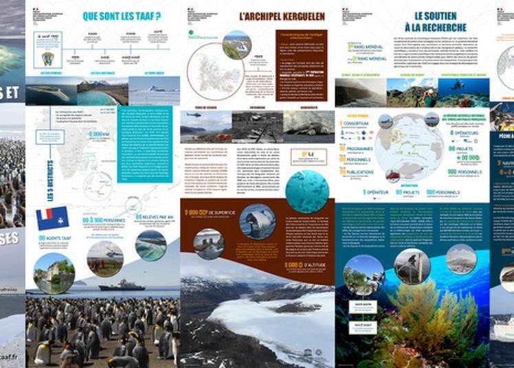 Partez à La Découverte Des Terres Australes Et Antarctiques Françaises? à Saint Pierre