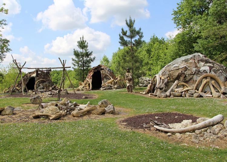 Partez À La Rencontre De Néandertal à Saint Cesaire