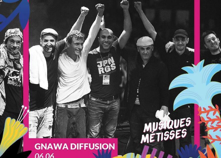Gnawa Diffusion Musiques Métisses à Angouleme