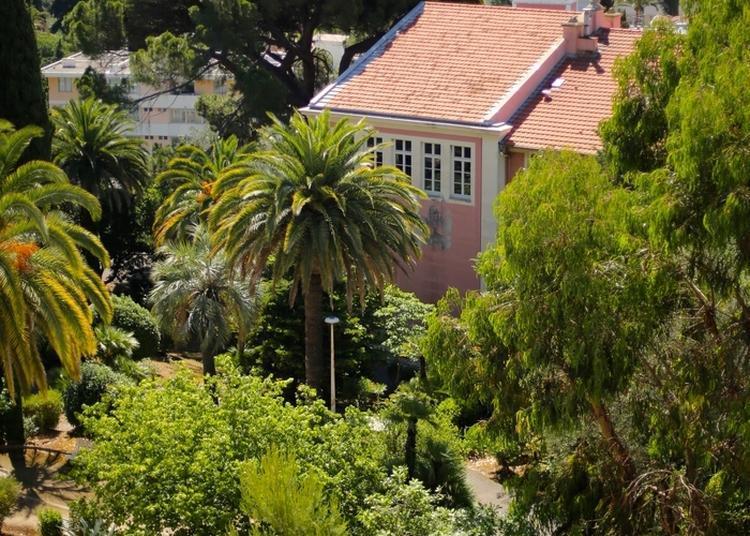 Patrimoine Culturel De La Faculté De Droit Et Science Politique à Nice