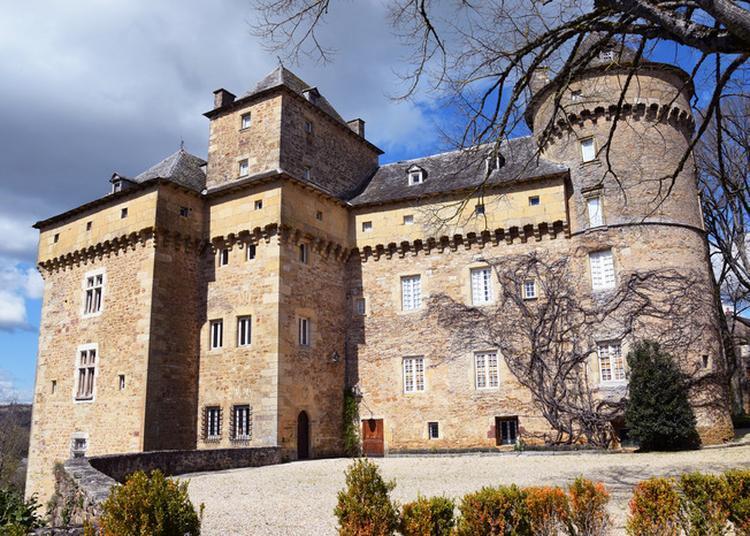 Patrimoine Local Et Patrimoine Archéologique Départemental En Clichés Et Vidéos à Montrozier