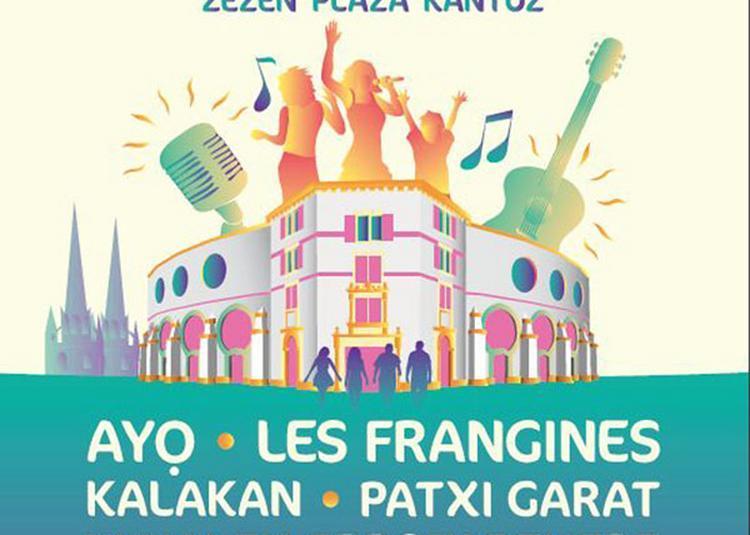 Patxi Garat - Kalakan - à Bayonne
