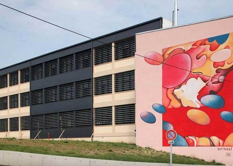 Peinture Murale De 13 M X 10 M De Guillaume Bottazzi à Beaumont