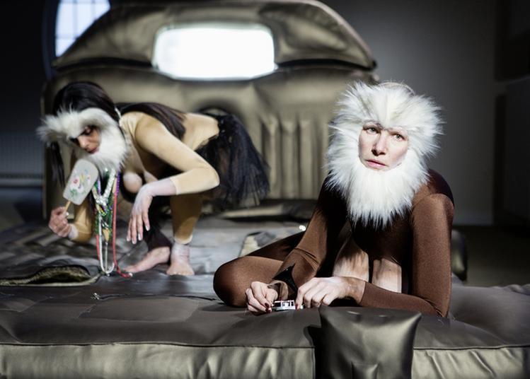 Performance 'consul & Meshie' De Latifa Laâbissi & Antonia Baer à Grenoble