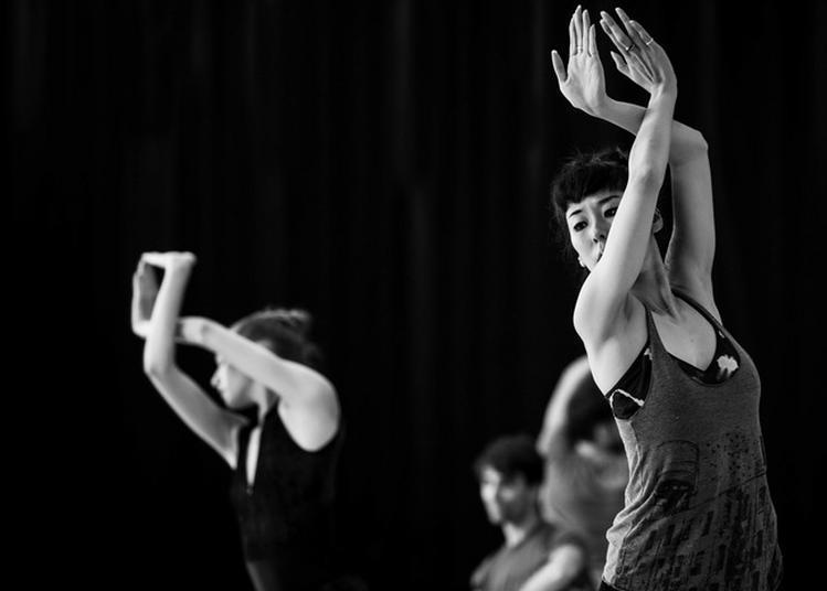Performance Des Ballets De Monte-carlo à Nice