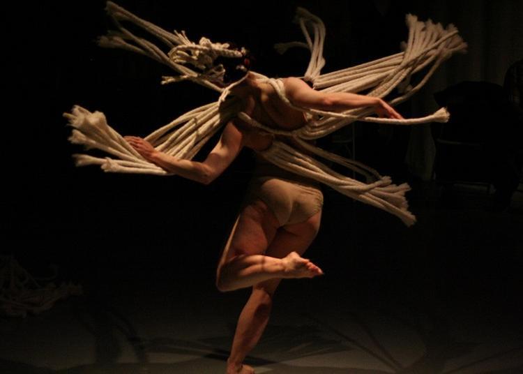 Performances : Sortie De Residence Company Stefanie Batten Bland à Paris 16ème