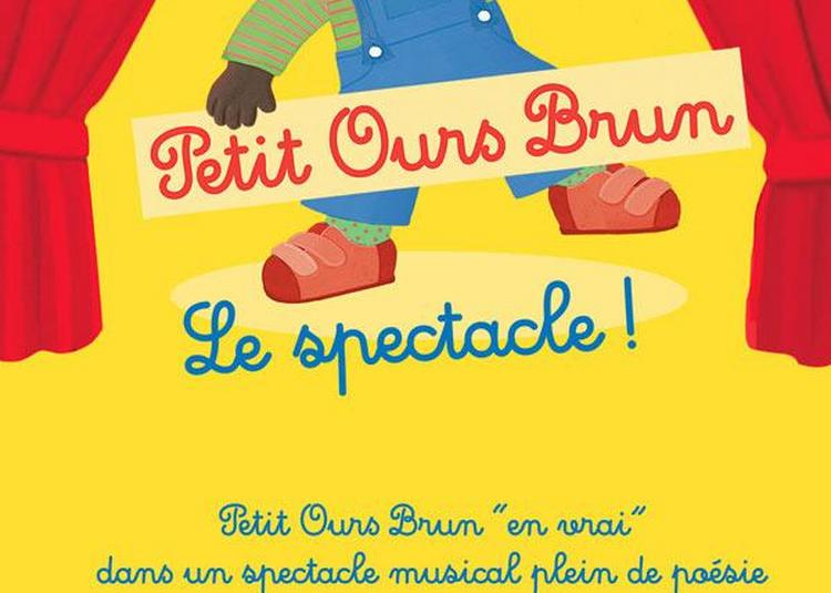 Petit Ours Brun à Lyon