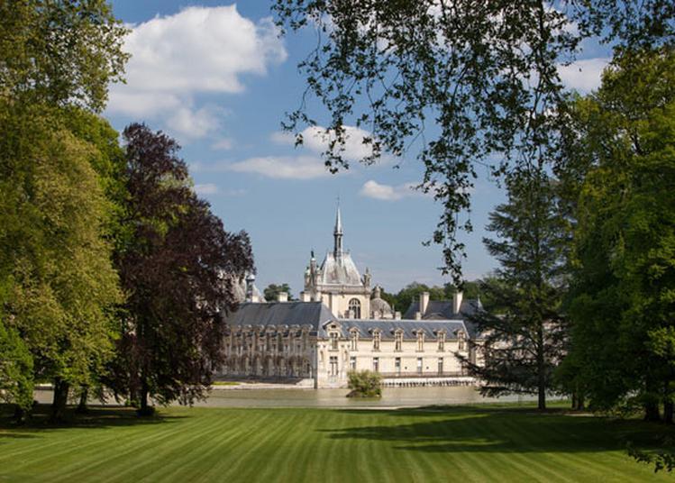 Pique-Nique En Blanc à Chantilly
