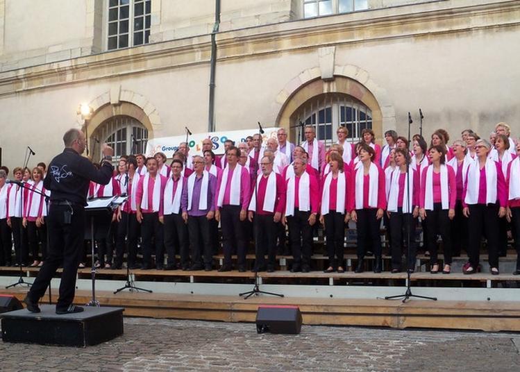 Plateau Chantant à Dijon