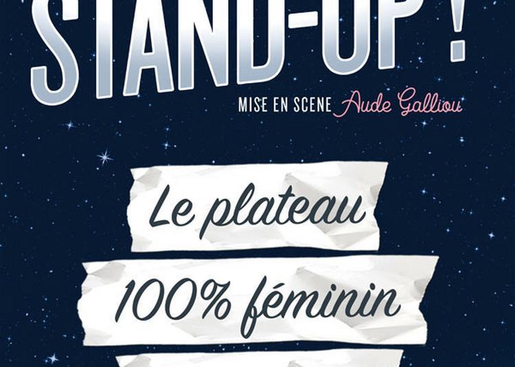 Please Stand-Up ! à Conflans sainte Honorine