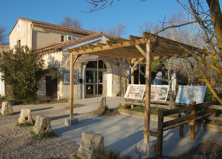 Portes Ouvertes À La Capelière Et À Salin De Badon à Arles