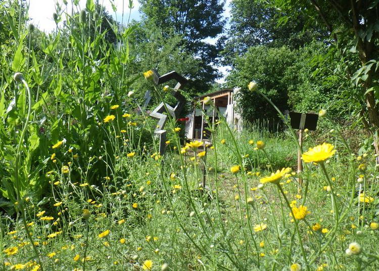 Portes Ouvertes Au Jardin Des Couleurs à Montreuil